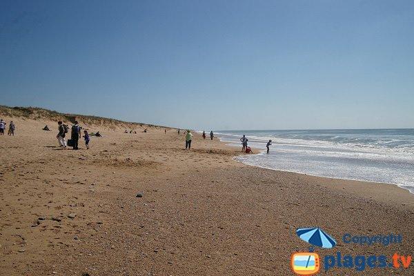 Wild beach in Brétignolles sur Mer
