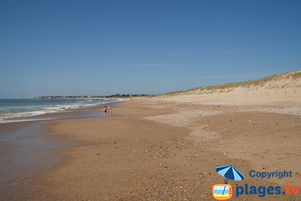 Beach with dunes in Brétignolles sur Mer in France