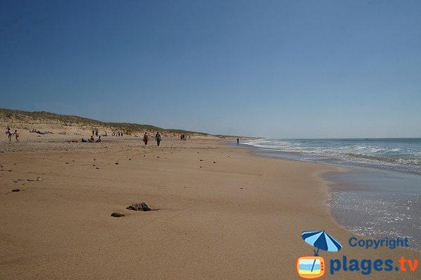 Plage de sable fin à Brétignolles sur Mer - Les Dunes