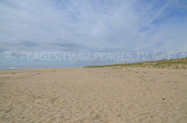 Plage des Dunes du Cap Ferret