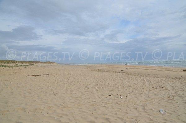 Dunes du Cap Ferret à proximité de la pointe et du Sémaphore