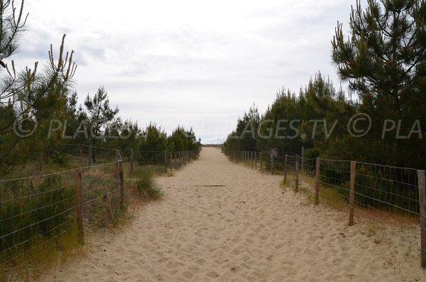 Accès à la plage des dunes du Cap Ferret