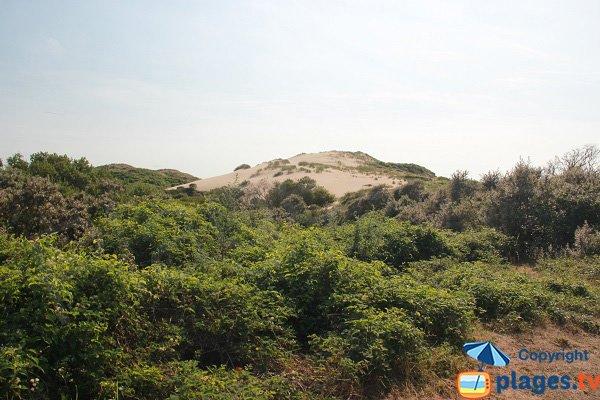 Dunes du Slack