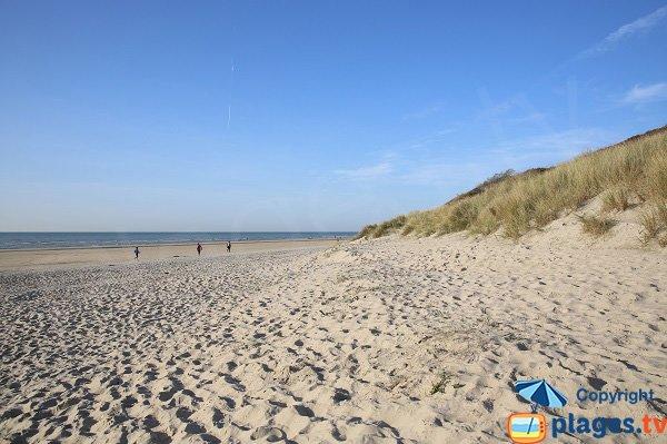 Plage bordée par les dunes d'Ecault