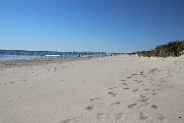 Vue de la plage des Echirolles en direction du Grand Tarvers et de Carnon