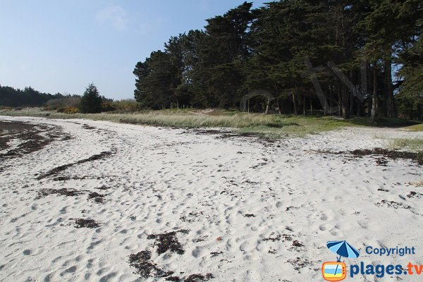 Fist beach of Perharidi - Roscoff