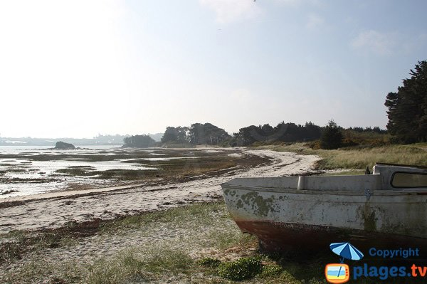 Wild beach of Roscoff - Perharidi