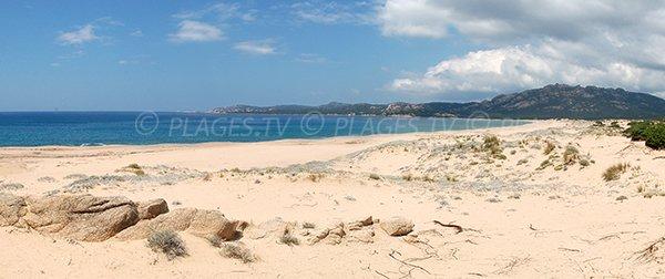 spiaggia selvaggia in Sartène - Erbaju