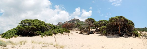Tour génoise de Roccapina depuis la plage d'Erbaju - Sartène