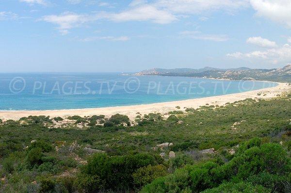 Foto della spiaggia d'Erbaju a Sartène - Corsica