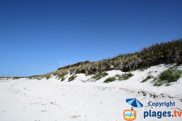 Dunes de la plage d'Erleac'h à Saint Pabu dans le Finistère Nord