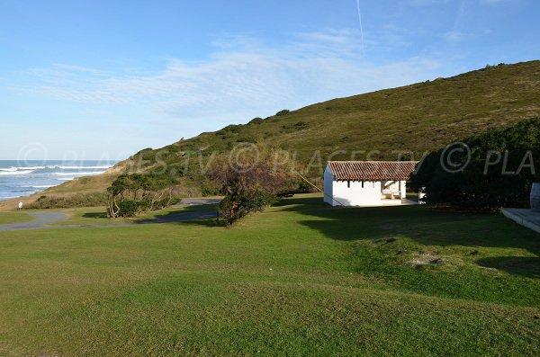 Ambiente verde della spiaggia Erretegia a Bidart