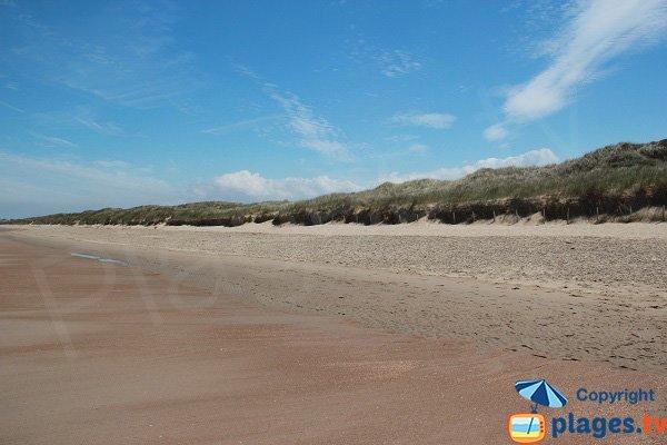 Dunes du Platier d'Oye