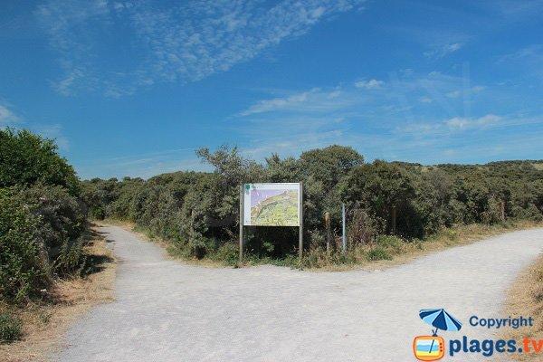 Sentier dans la réserve du Platier d'Oye