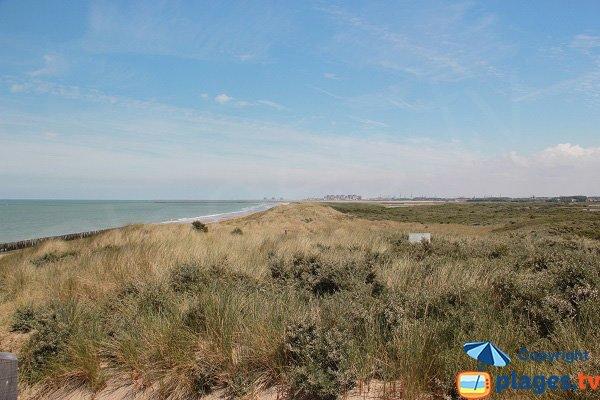 Photo de la plage des Escardines d'Oye-Plage
