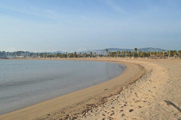 Vue sur Saint-Aygulf et les palmiers de cette plage