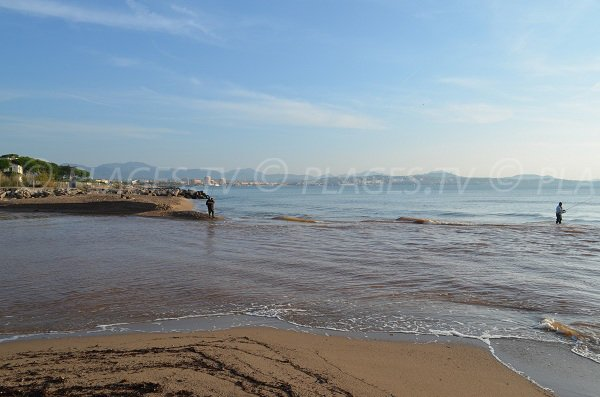 Limite de la plage des Esclamandes avec la rivière de l'Argens