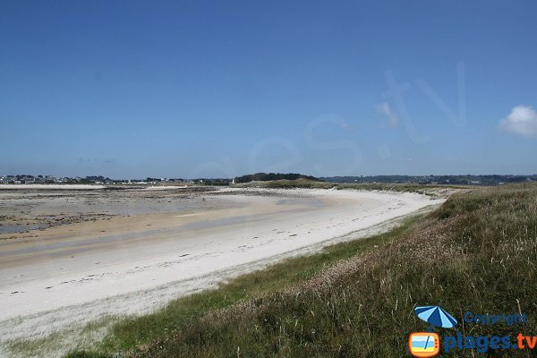 Photo de la plage à l'est de l'ile d'Aganton - Pleumeur-Bodou