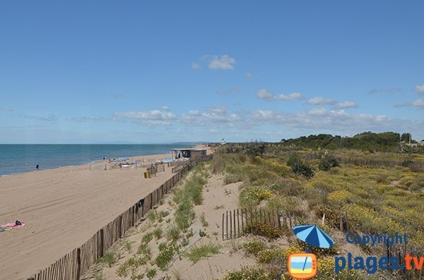 Photo de la plage Est de Portiragnes