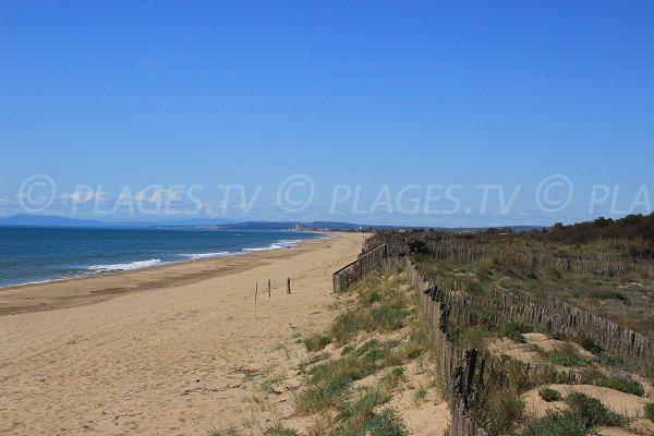 Wild beach in Portiragnes  towards Sérignan