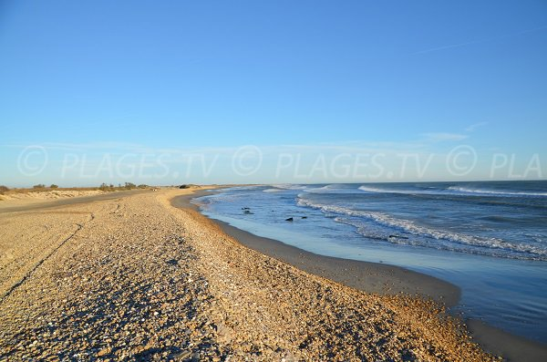 Foto Eastern beach of Saintes Maries de la Mer in France