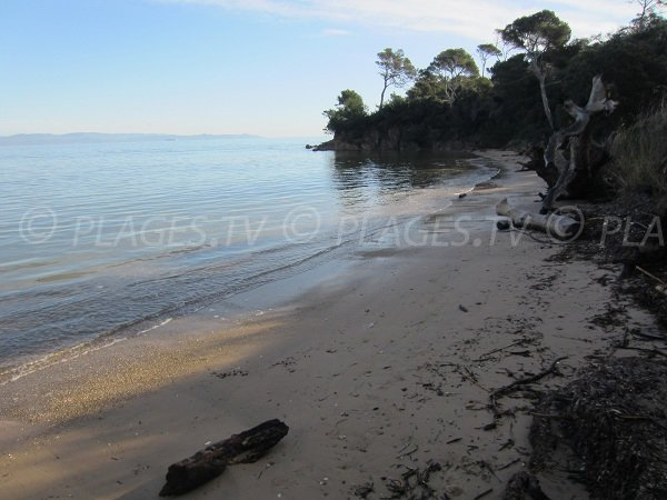 Sand beach in the Giens peninsula - Hyeres - France