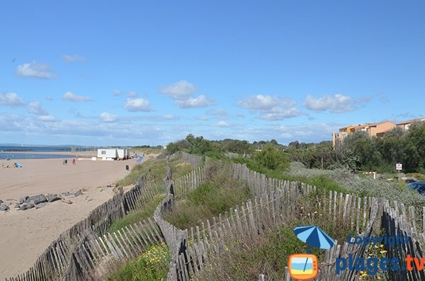 Dunes de la plage du centre de Vias