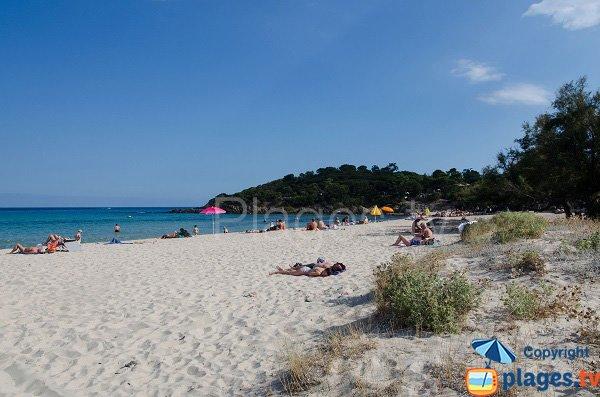 Photo de la plage de Fautea