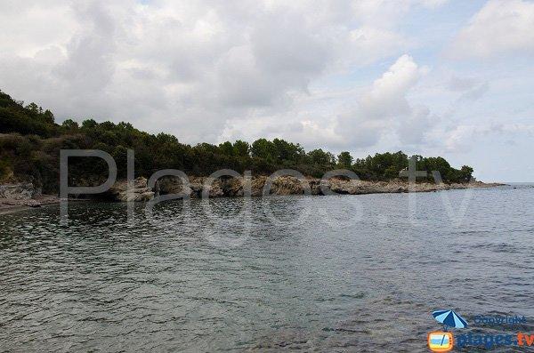 Environnement de la plage de Fava - Corse du Sud