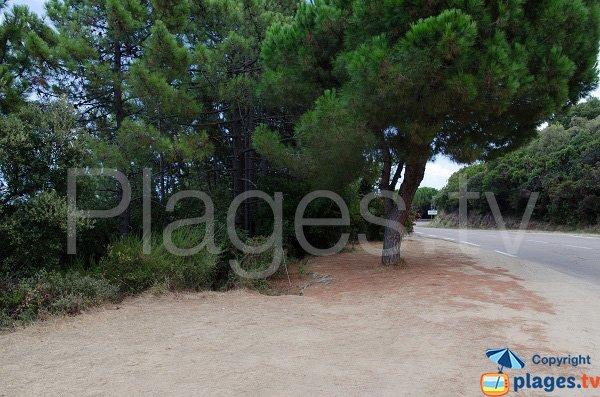 Parking de la plage de Fava - Solenzara