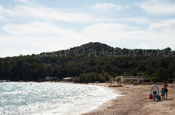 Paillote sur la plage de Favone