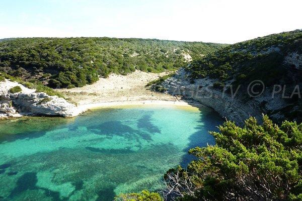 Fazzio beach in Bonifacio in Corsica
