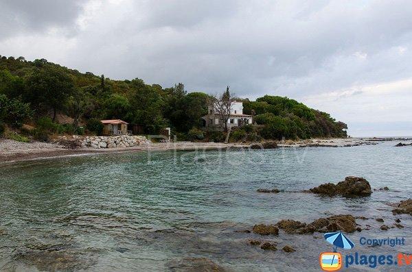 Figa beach in Corsica