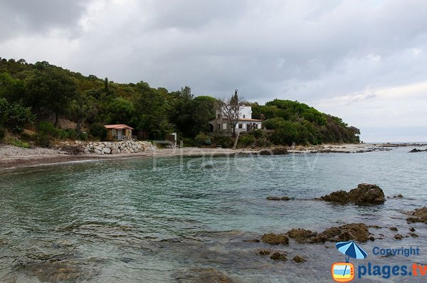 Spiaggia di Figa in Corsica