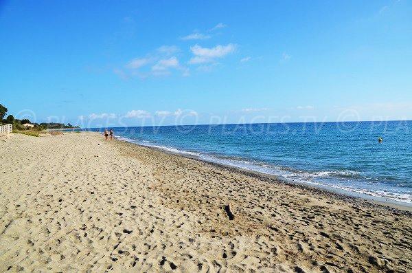 Photo de la plage de Figaretto en direction du nord