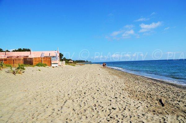 Paillote sur la plage de Figaretto en Corse