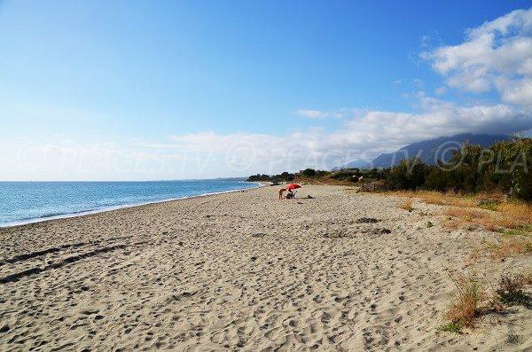 Photo de la plage de Figaretto à Poggio Mezzana - Corse