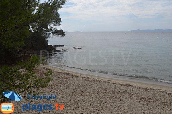 Photo de la plage du domaine de Rayol Canadel