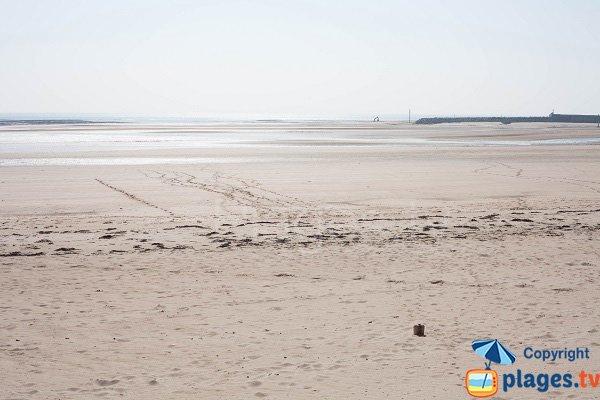 Plage de la flèche dunaire à marée basse - Barneville