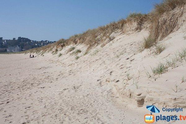 Dune of Barneville
