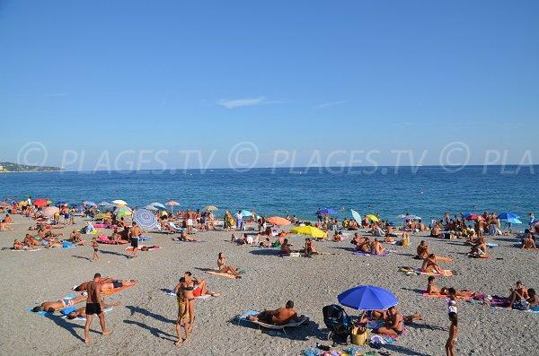 Florida Beach In Summer Nice