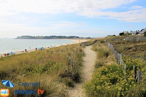 Trail on the dune of Fogeo beach in Arzon