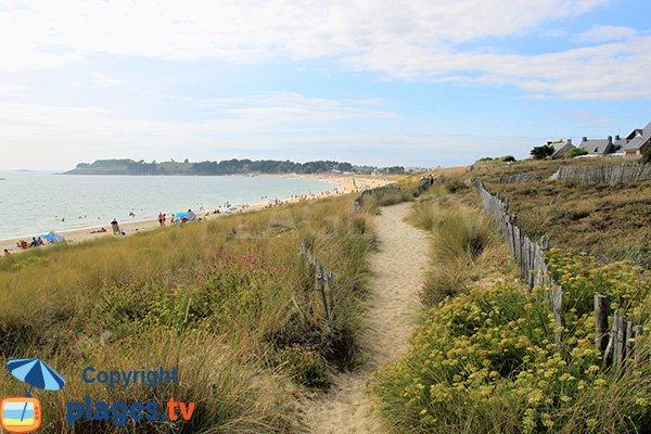 Sentier sur la dune de la plage du Fogeo à Arzon
