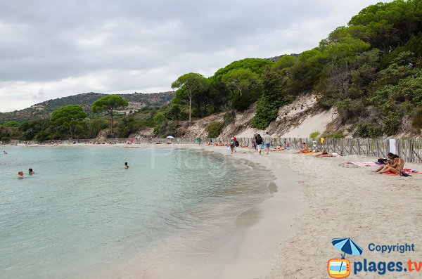 Extrémité de la plage de Folacca - Palombaggia