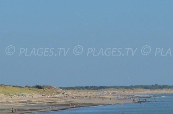 Follies beach in La Couarde sur Mer - Isle of Rhé