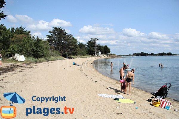 Belle plage de sable sur l'ile d'Arz - Fontaine Varia
