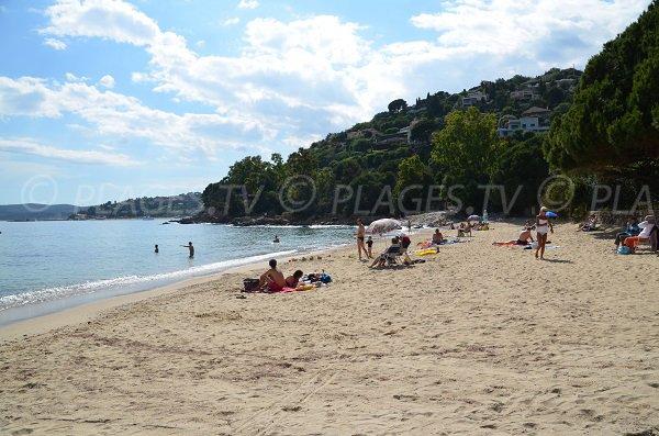 Public beach in Lavandou - La Fossette