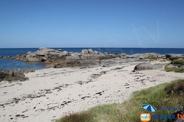Environnement sauvage en bord de mer de Plouescat