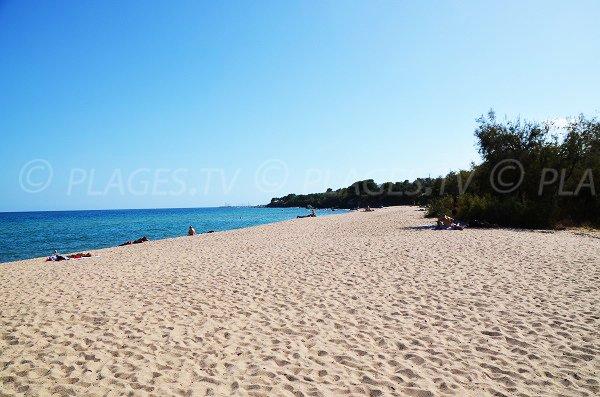 Photo de la plage de Funtanaccia en allant vers le sud
