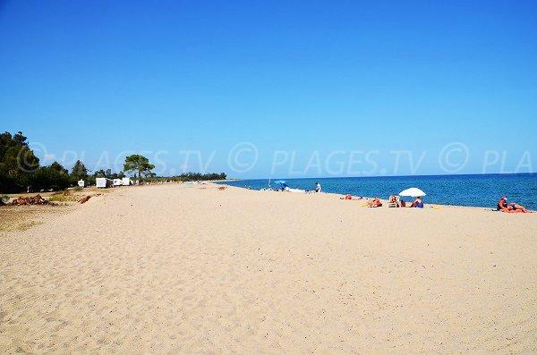 Photo de la plage de Funtanaccia à Solaro en Corse